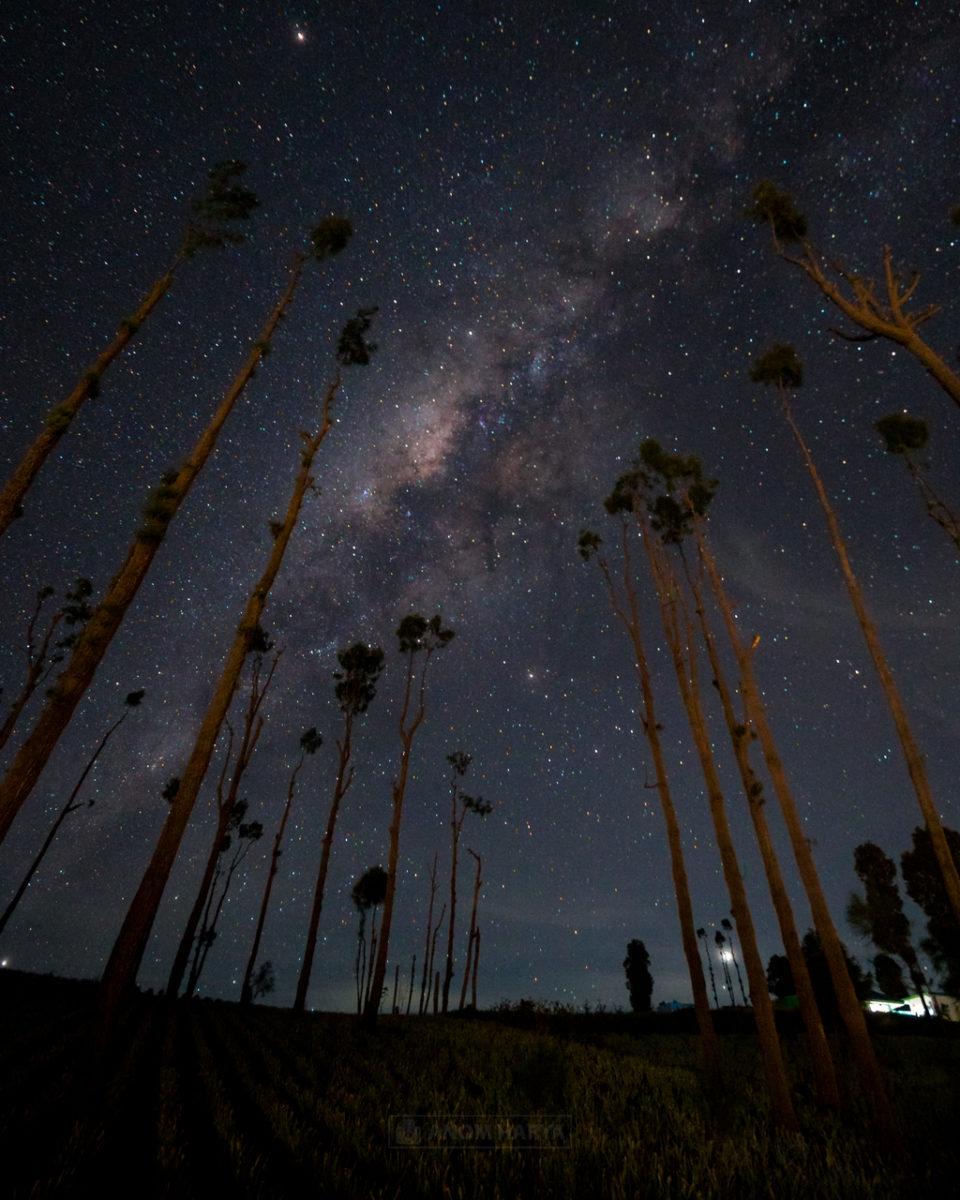 Melihat Milkyway di Seruni Bromo