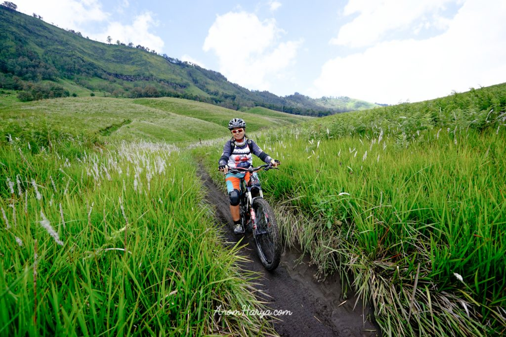Mountain Biking on Savannah Bromo