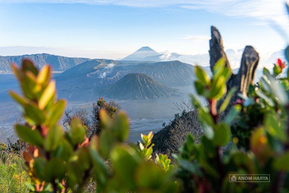 Golden Hour Sunset di Bromo