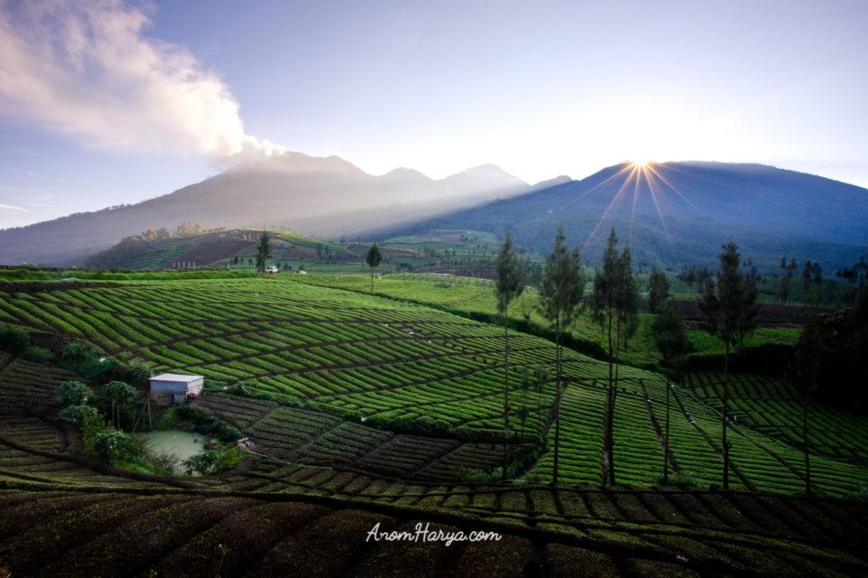 Sunrise View Brakseng Cangar Malang