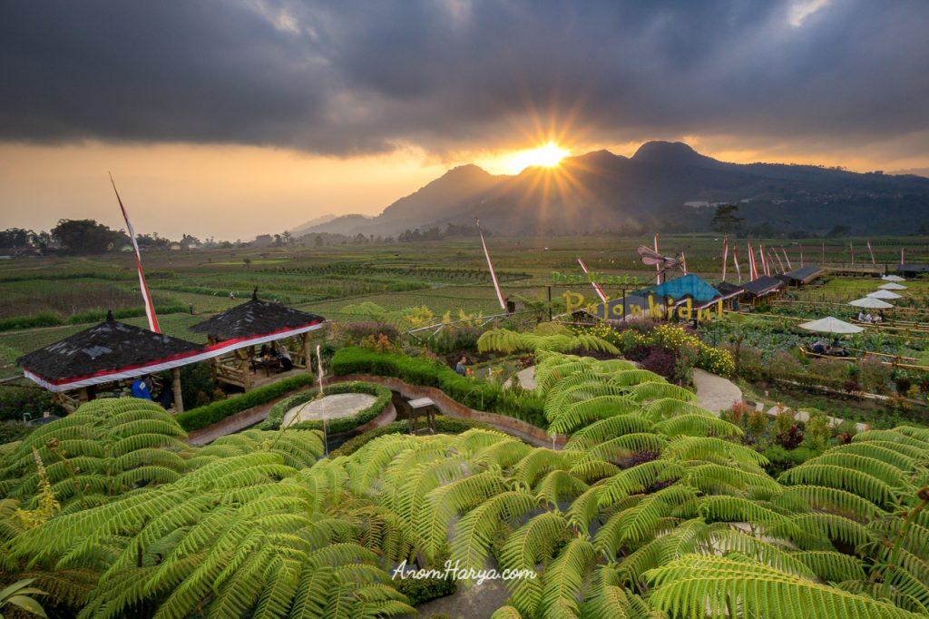 Sunset di Cafe Sawah Pujon Kidul