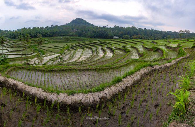 Foto landscape hasil stitching